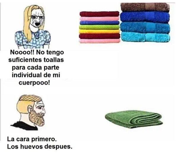 Meme_otros - Una toalla para todo
