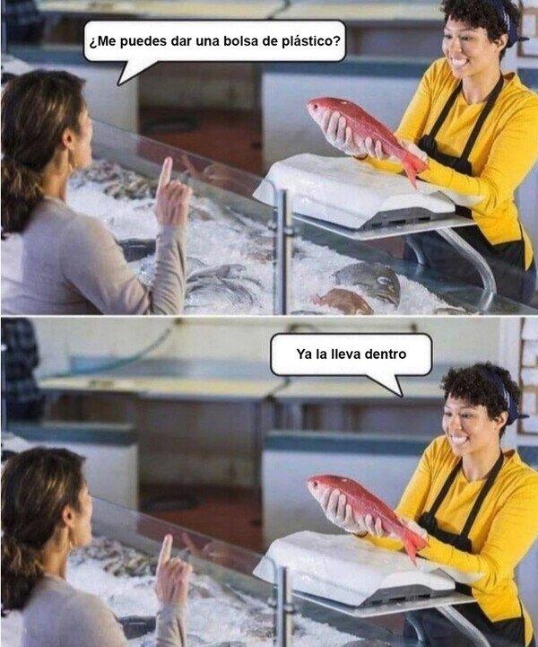 bolsa,dentro,peces,pescadería,pescado,plástico