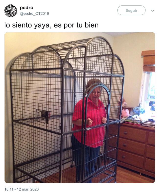 4623 - Proteged a vuestros mayores, por @pedro_OT2019