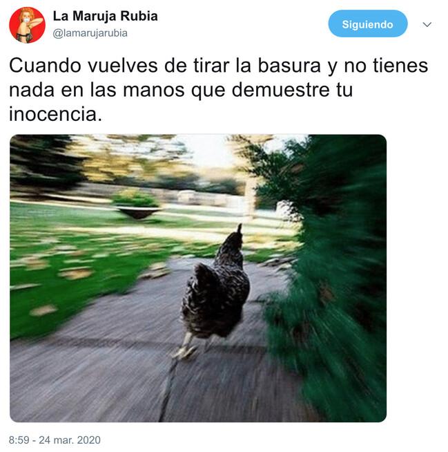 8379 - Sentirte como un delincuente a todas horas, por @lamarujarubia