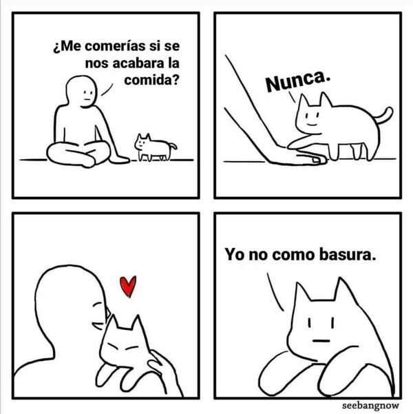 11773 - La razón por la que tu gato nunca te comería