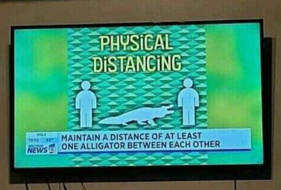 12033 - Alligator como unidad de longitud