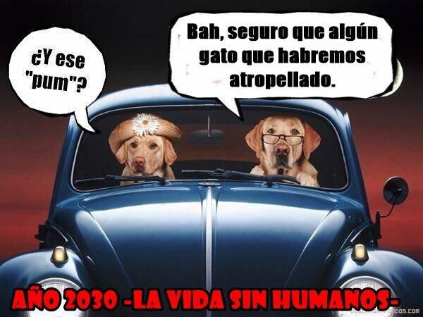 13714 - La vida sin humanos