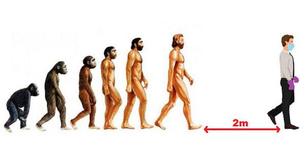 17082 - La evolución del hombre...