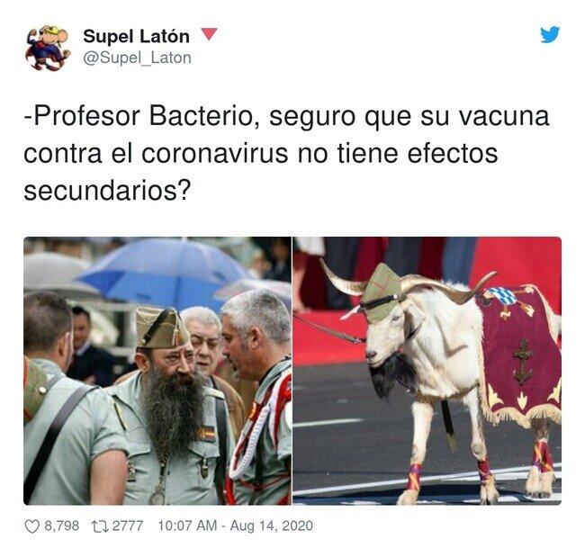 19238 - Confianza ciega en el señor Bacterio , por @Supel_Laton