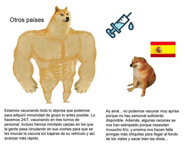 21884 - Así llevamos la vacunación en España