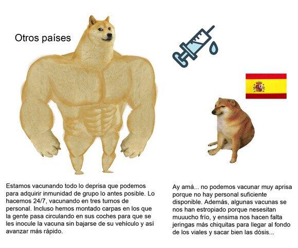 21887 - España siempre a su ritmo