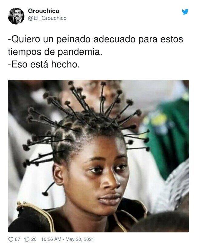 23313 - Este peinado se me hace familiar, por @El_Grouchico