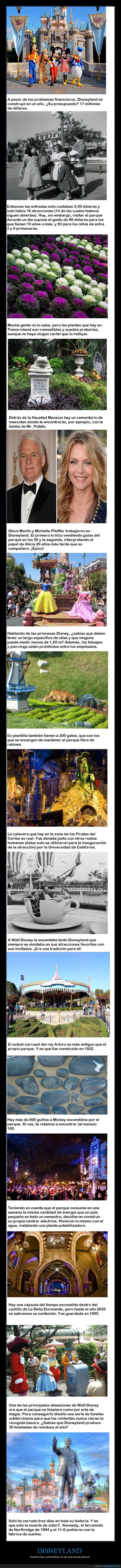 Disneyland,diversión,juegos,parque de atracciones,Walt Disney