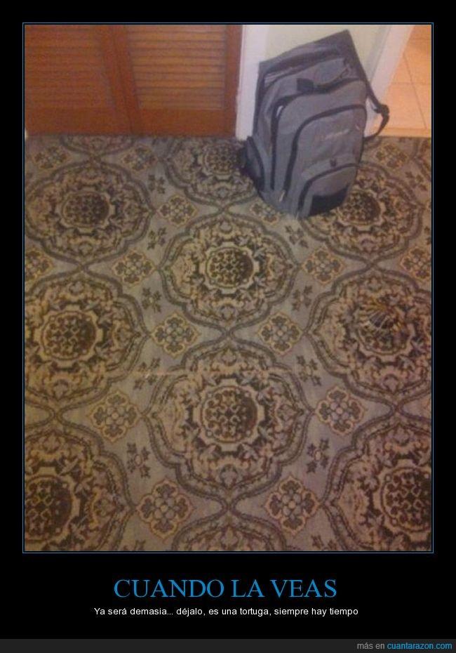 alfombra,escondida,mindf*ck,tortuga
