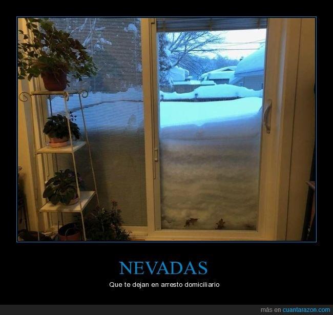 casa,nevada,nieve,puerta