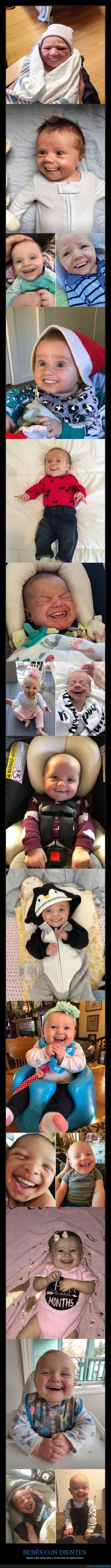 bebés,dientes,photoshop