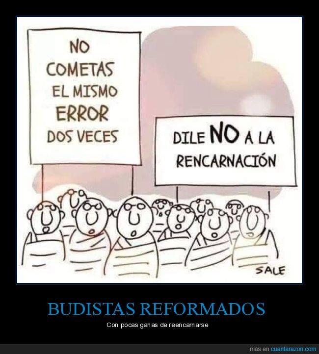 budistas,error,reencarnación