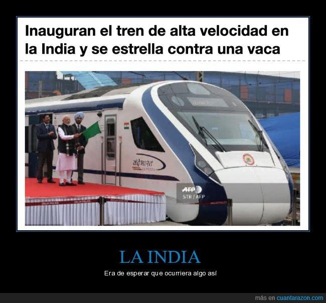 alta velocidad,fails,inauguración,india,tren,vaca