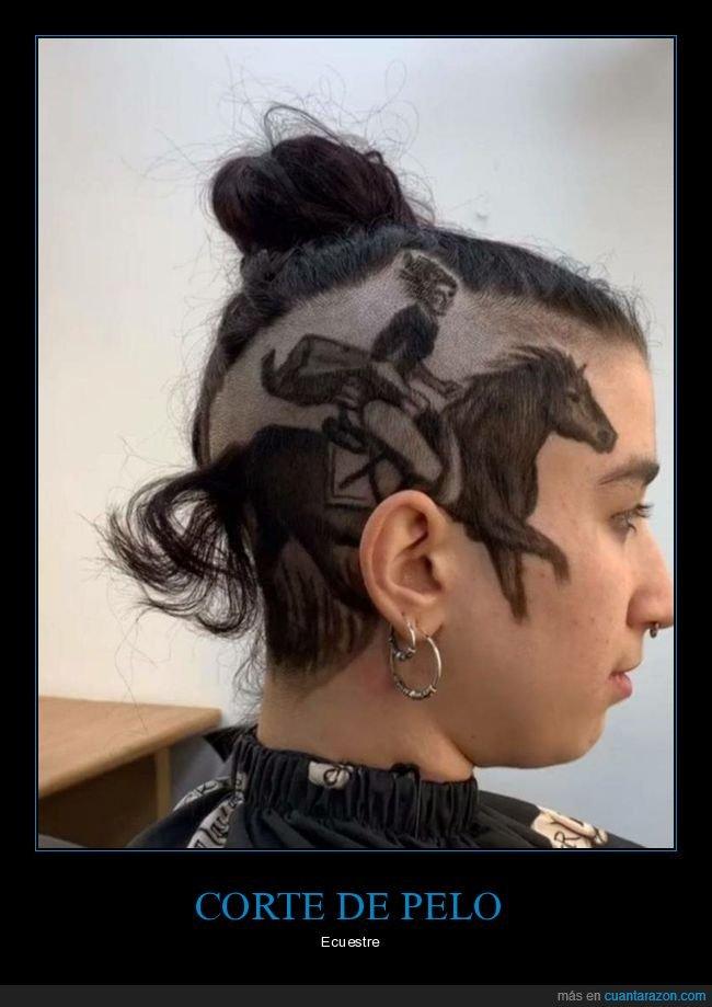 caballo,corte de pelo,wtf