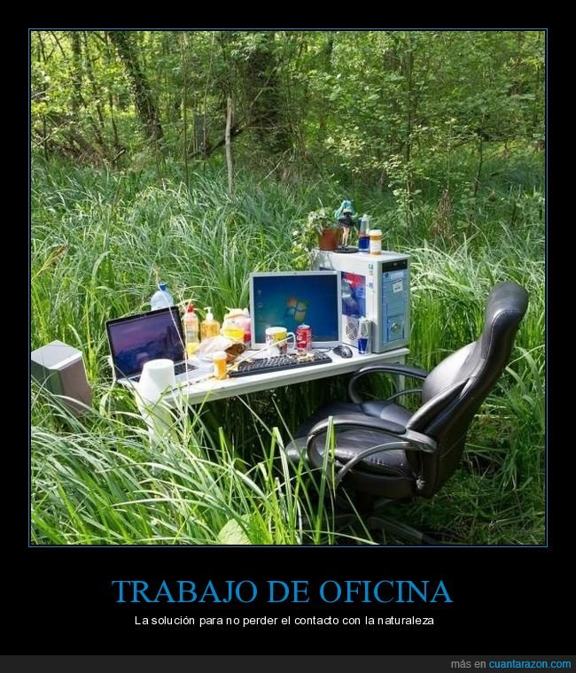 naturaleza,oficina,trabajo