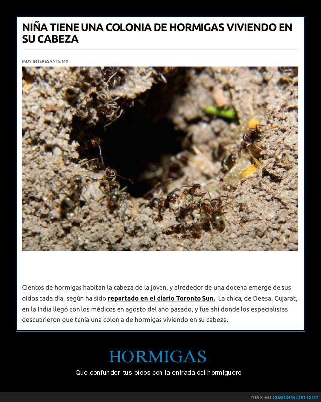 cabeza,hormigas,niña