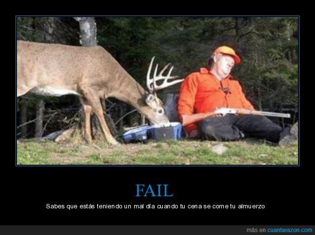 cazador,ciervo,comiendo,durmiendo