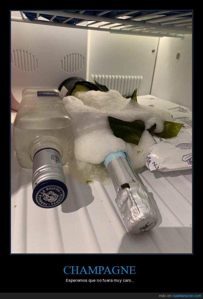 botella,champagne,congelador,fails,nevera