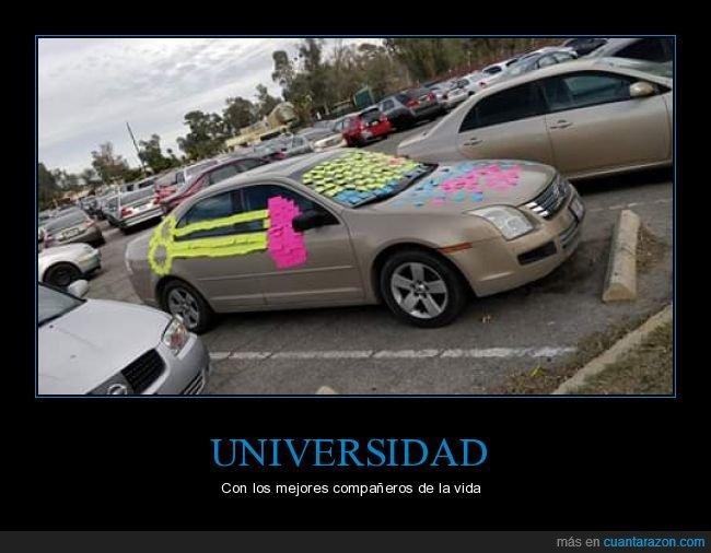coche,post-its,trolling