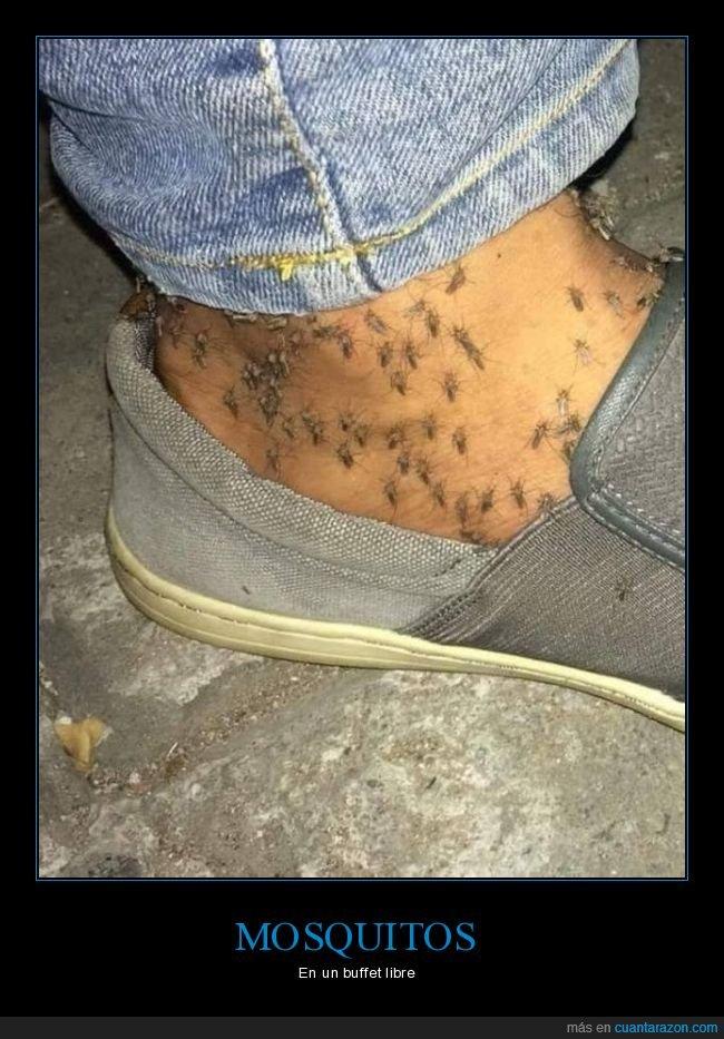 mosquitos,tobillo,wtf