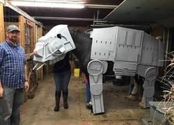 Enlace a Disfraz equino