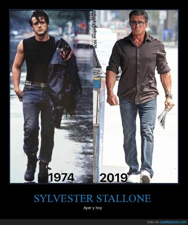 ahora,antes,sylvester stallone
