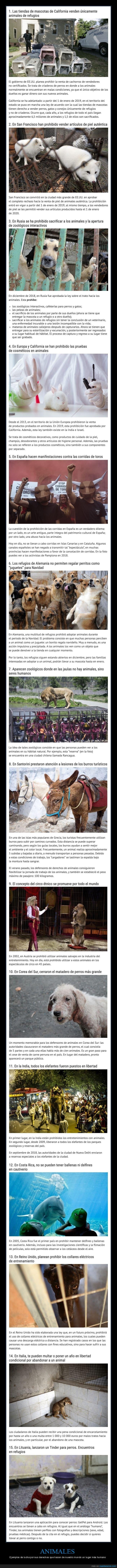 animales,derechos
