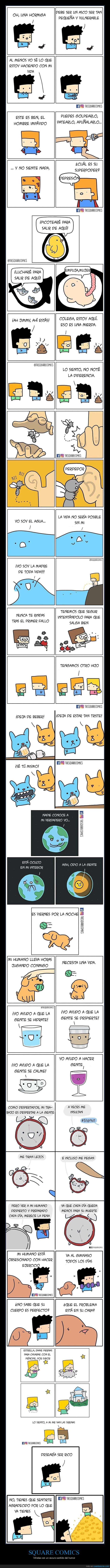 square comics,viñetas