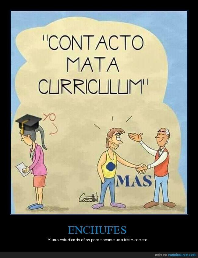 curriculum,enchufe,estudios,trabajo