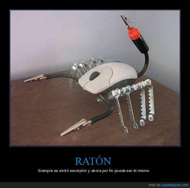escorpión,ratón,wtf