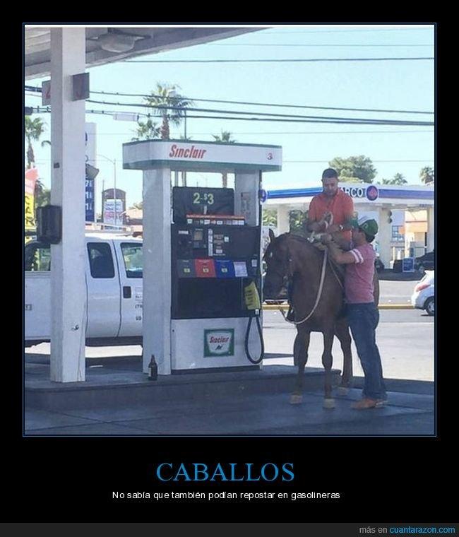 caballo,gasolinera,repostar