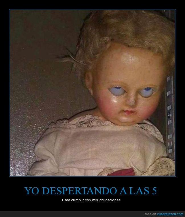cara,despertar,muñeca