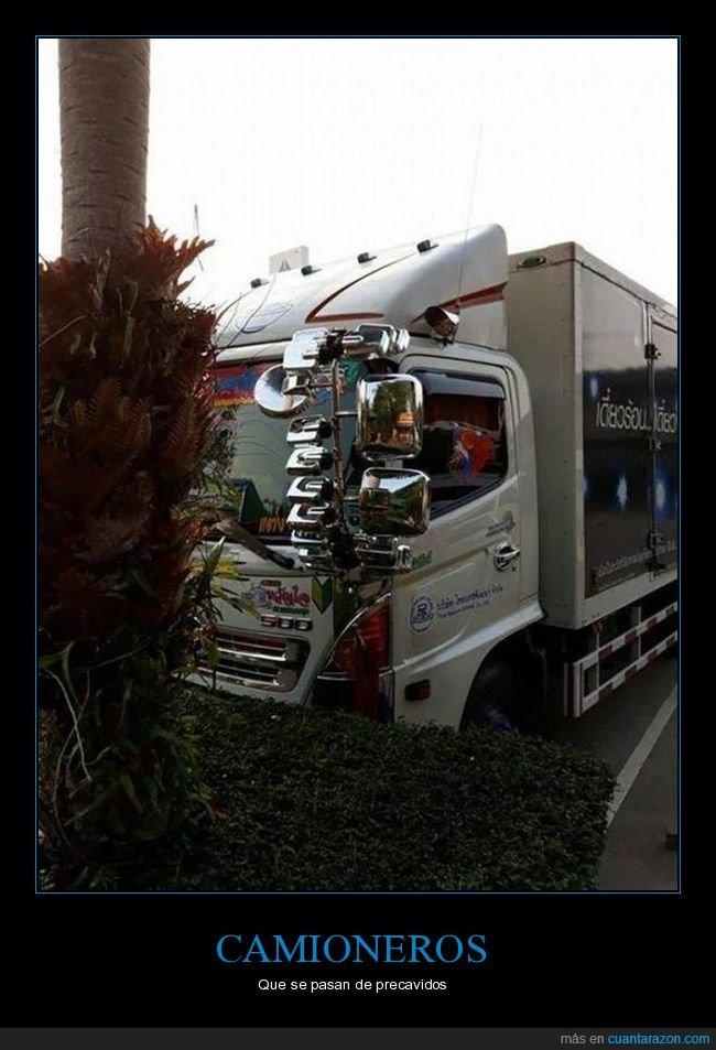 camión,camionero,precavido,retrovisores