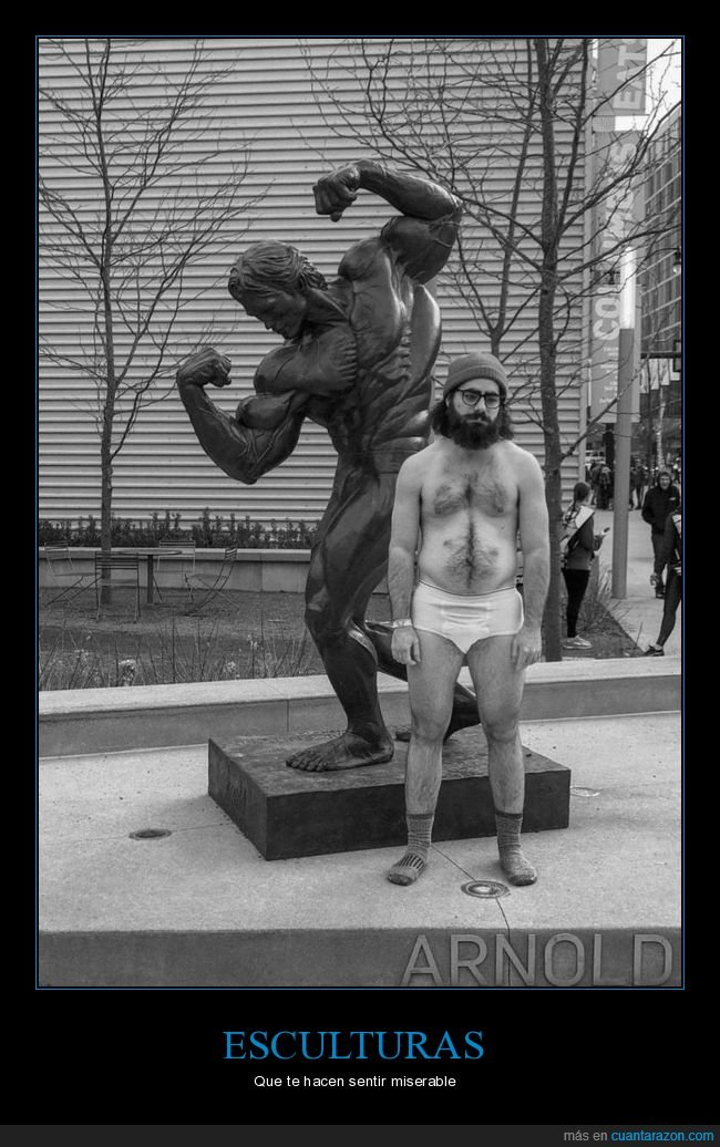 arnold schwarzenegger,cuerpo,escultura