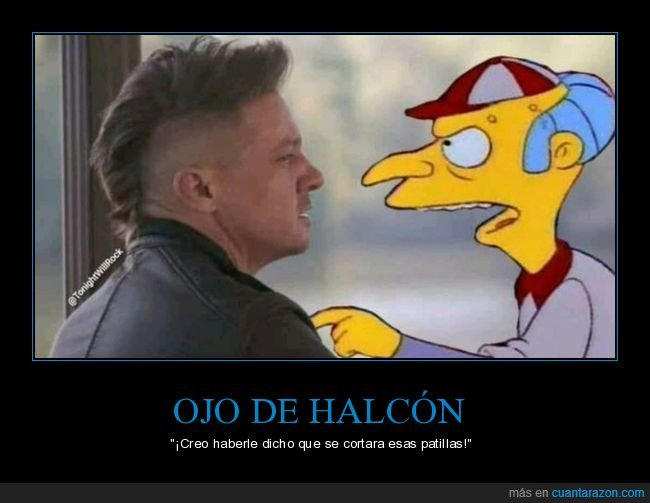 burns,ojo de halcón,patillas,simpsons