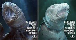 Enlace a Esta impactante campaña usa imágenes gráficas para señalar el daño que hacen los plásticos a la fauna marina