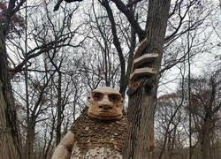 Enlace a Mejor en el bosque que en internet