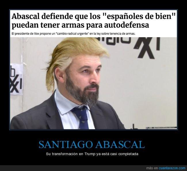 armas,autodefensa,españoles de bien,políticos,santiago abascal,vox