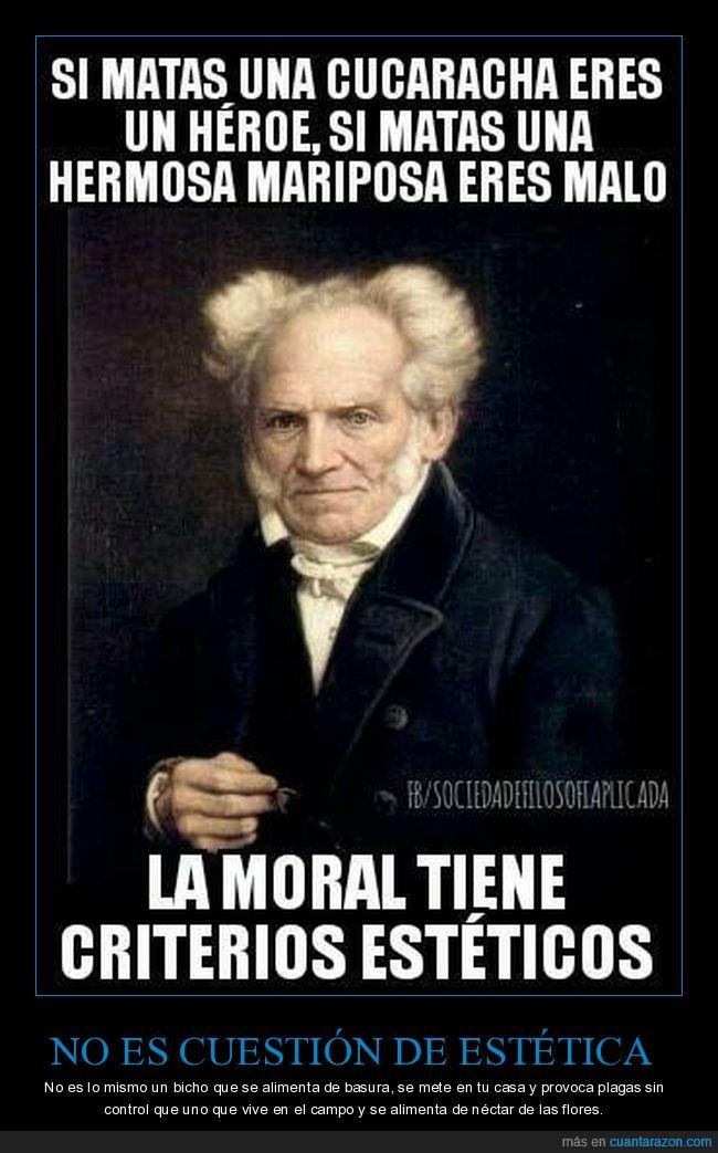 cucaracha,estética,héroe,malo,mariposa,matar,moral,schopenhauer