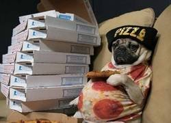Enlace a Cuando pides pizza en exceso