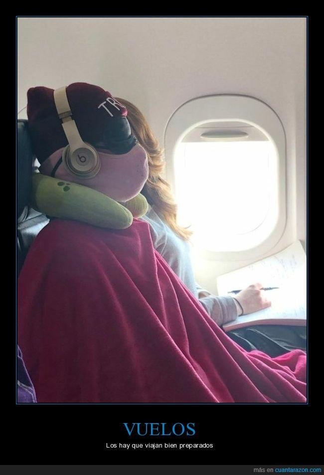 durmiendo,preparado,vuelo