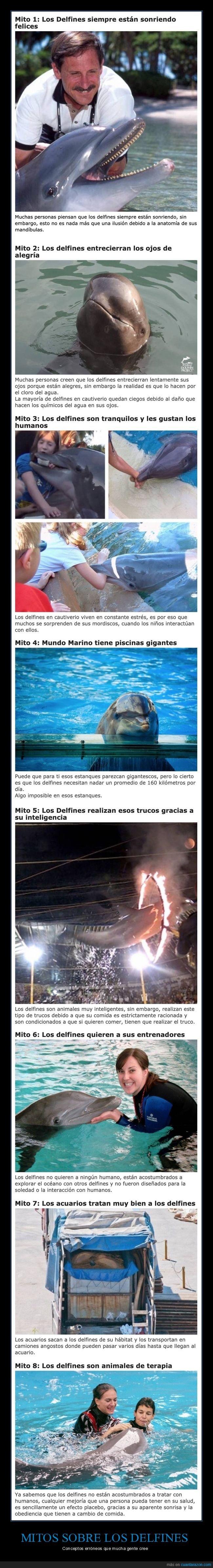 delfines,mitos