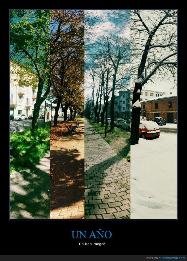 año,estaciones,invierno,otoño,primavera,verano
