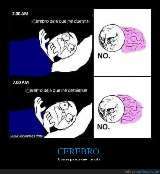 cerebro,despertar,dormir,no