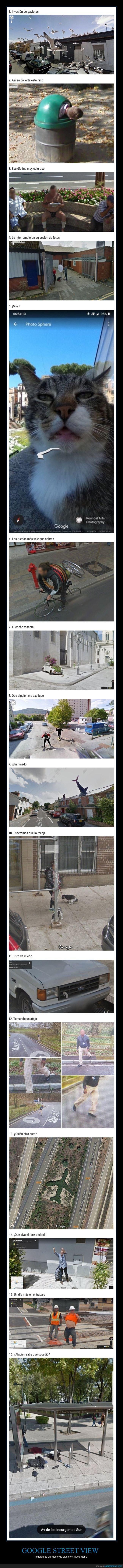 google,street view,wtf