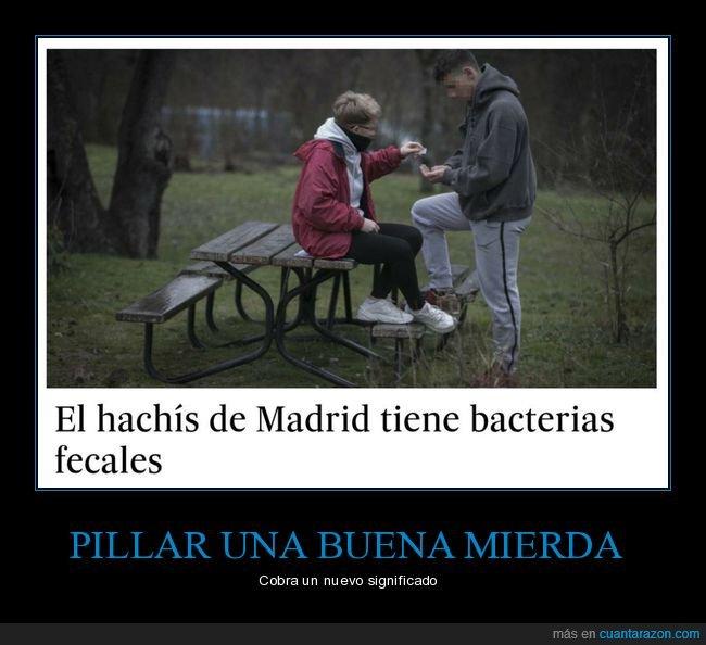 bacterias fecales,hachís,wtf