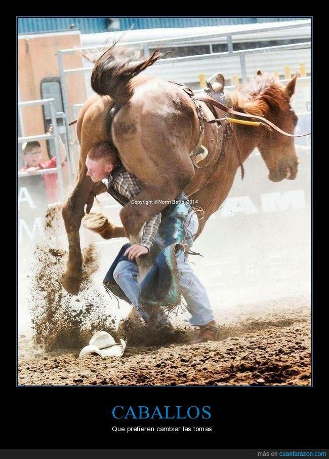 al revés,caballo,wtf