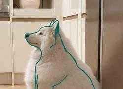 Enlace a El perro interior
