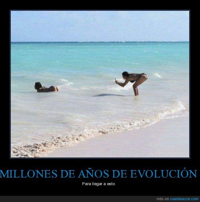 culo,evolución,foto,playa